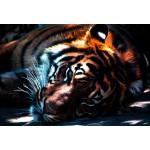 Puzzle  Grafika-Kids-00965 Pièces XXL - Tigre