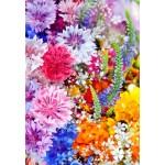 Puzzle  Grafika-Kids-01170 Explosion de Fleurs