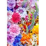 Puzzle  Grafika-Kids-01173 Pièces XXL - Explosion de Fleurs