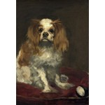 Puzzle  Grafika-Kids-01255 Edouard Manet : Un Cavalier King Charles Spaniel, 1866