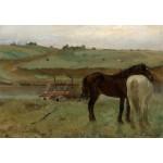 Puzzle  Grafika-Kids-01279 Edgar Degas : Chevaux dans un Pré, 1871