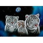 Puzzle  Grafika-Kids-01662 Pièces magnétiques - Schim Schimmel - Gentle Family