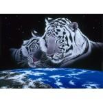 Puzzle  Grafika-Kids-01670 Schim Schimmel - Sleep Tight