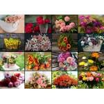 Puzzle  Grafika-Kids-01940 Pièces magnétiques - Collage - Fleurs