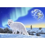 Puzzle  Grafika-Kids-01951 Pièces XXL - Schim Schimmel - Artic Fox