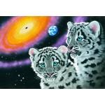 Puzzle  Grafika-Kids-01956 Schim Schimmel - Miracle of the Universe