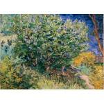 Puzzle  Grafika-Kids-02038 Vincent Van Gogh - Lilas, 1889