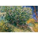 Puzzle  Grafika-Kids-02039 Vincent Van Gogh - Lilas, 1889