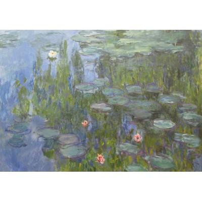Puzzle Grafika-00033 Claude Monet : Nymphéas, 1915