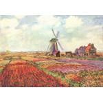 Puzzle  Grafika-00053 Claude Monet : Tulipes des Pays-Bas, 1872
