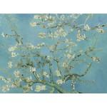Puzzle  Grafika-00062 Vincent van Gogh : Amandier en Fleurs, 1890