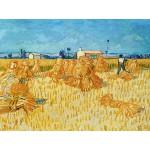 Puzzle  Grafika-00072 Vincent Van Gogh : Moissons en Provence, 1888