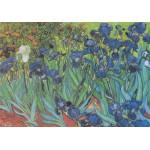 Puzzle  Grafika-00074 Vincent Van Gogh : Saint-Remy - Les Iris, 1889