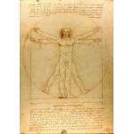 Puzzle  Grafika-00122 Léonard de Vinci : L'Homme de Vitruve, 1490
