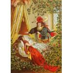 Puzzle  Grafika-00206 Carl Offterdinger : La Belle au Bois Dormant, fin XIXe Siècle