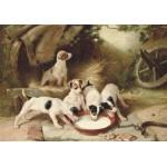 Puzzle  Grafika-00358 Walter Hunt : Puppies' Breakfast, 1885