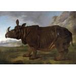 Puzzle  Grafika-00387 Jean-Baptiste Oudry : Clara le Rhinocéros, 1749