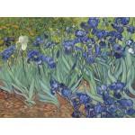 Puzzle  Grafika-00751 Van Gogh Vincent : Les Iris, 1889