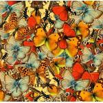 Puzzle  Grafika-00797 Nuée de Papillons