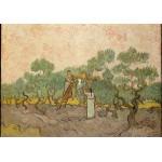 Puzzle  Grafika-00863 Van Gogh Vincent : Femmes ramassant des Olives, 1889