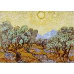 Puzzle  Grafika-01174 Vincent Van Gogh : Les Oliviers, 1889