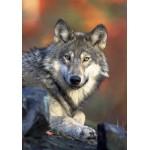 Puzzle  Grafika-01236 Loup