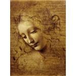 Puzzle  Grafika-01295 Léonard de Vinci : Visage de Giovane Fanciulla, 1508