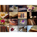 Puzzle  Grafika-01476 Collage - Livres