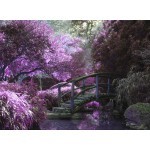 Puzzle  Grafika-01498 Pont Zen