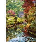 Puzzle  Grafika-01564 Forêt Zen