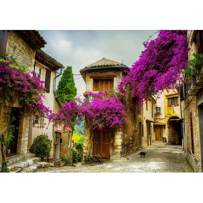 Puzzle Grafika-01574 Provence, France