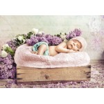 Puzzle  Grafika-01609 Konrad Bak: Baby sleeping in the Lilac