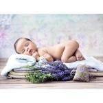 Puzzle  Grafika-01623 Konrad Bak: Baby Lavender