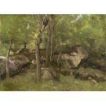 Puzzle  Grafika-01973 Jean-Baptiste-Camille Corot : Rochers en Forêt de Fontainebleau, 1860-1865