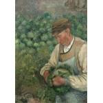 Puzzle  Grafika-02022 Camille Pissarro : Le Jardinier - Vieux Paysan avec Chou, 1883-1895