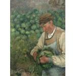 Puzzle  Grafika-02023 Camille Pissarro : Le Jardinier - Vieux Paysan avec Chou, 1883-1895
