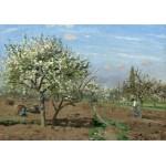 Puzzle  Grafika-02028 Camille Pissarro : Verger en Fleurs, Louveciennes, 1872