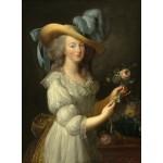 Puzzle  Grafika-02125 Elisabeth Vigée-Lebrun : Marie-Antoinette, 1783