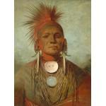 Puzzle  Grafika-02221 George Catlin : See-non-ty-a, Homme Medecine de l'Iowa Medicine Man, 1844-1845