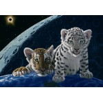 Puzzle  Grafika-02405 Schim Schimmel - Total Eclipse