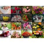 Puzzle  Grafika-02478 Collage - Fleurs