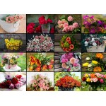 Puzzle  Grafika-02568 Collage - Fleurs