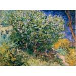 Puzzle  Grafika-02789 Vincent Van Gogh - Lilas, 1889