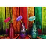Puzzle  Grafika-02822 Vases Fleuris et Colorés