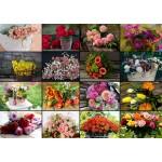 Puzzle   Collage - Bouquets de Fleurs