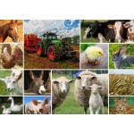 Puzzle  Grafika-T-00140 Collage - Animaux de la Ferme