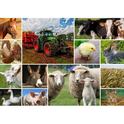 Puzzle Grafika-T-00141 Collage - Animaux de la Ferme