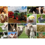 Puzzle  Grafika-T-00142 Collage - Animaux de la Ferme