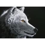 Puzzle  Grafika-T-00409 Schim Schimmel - Wolf Light