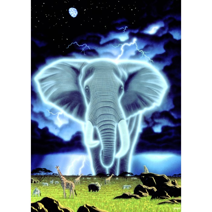 Schim Schimmel - Spirit of Africa